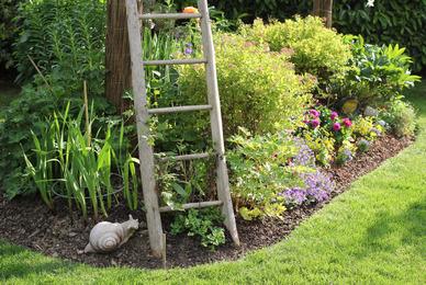 Paysagiste et aménagement de jardin