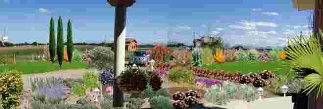 Conception et création de jardin