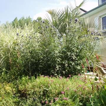 Aménagement jardin près de Lourdes