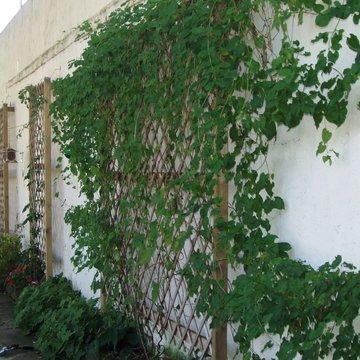 Aménagement extérieur près de Lourdes